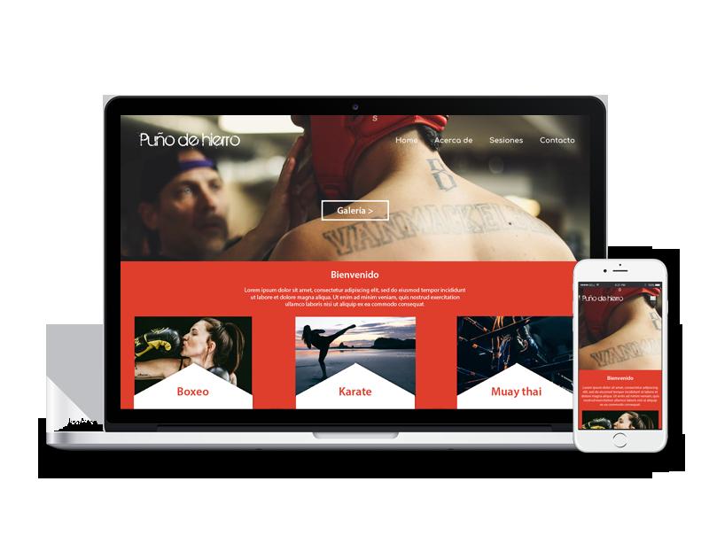 Diseño web arte marciales