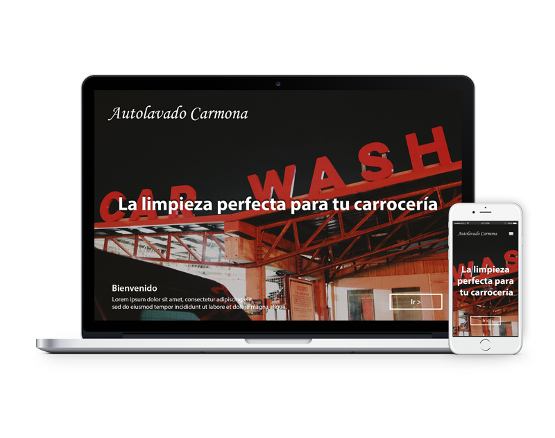 Diseño web autolavado